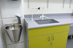 Lab sinks, taps, IPS units - Healthcare labs IPS unit with stainless steel handwash basin beside cast epoxy resin sink and drainer